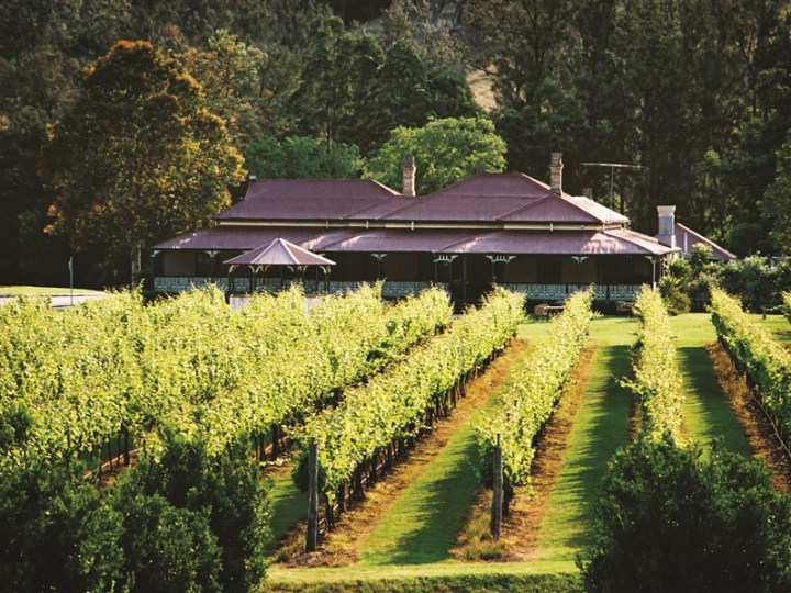 20. O'Reilly's Vineyards
