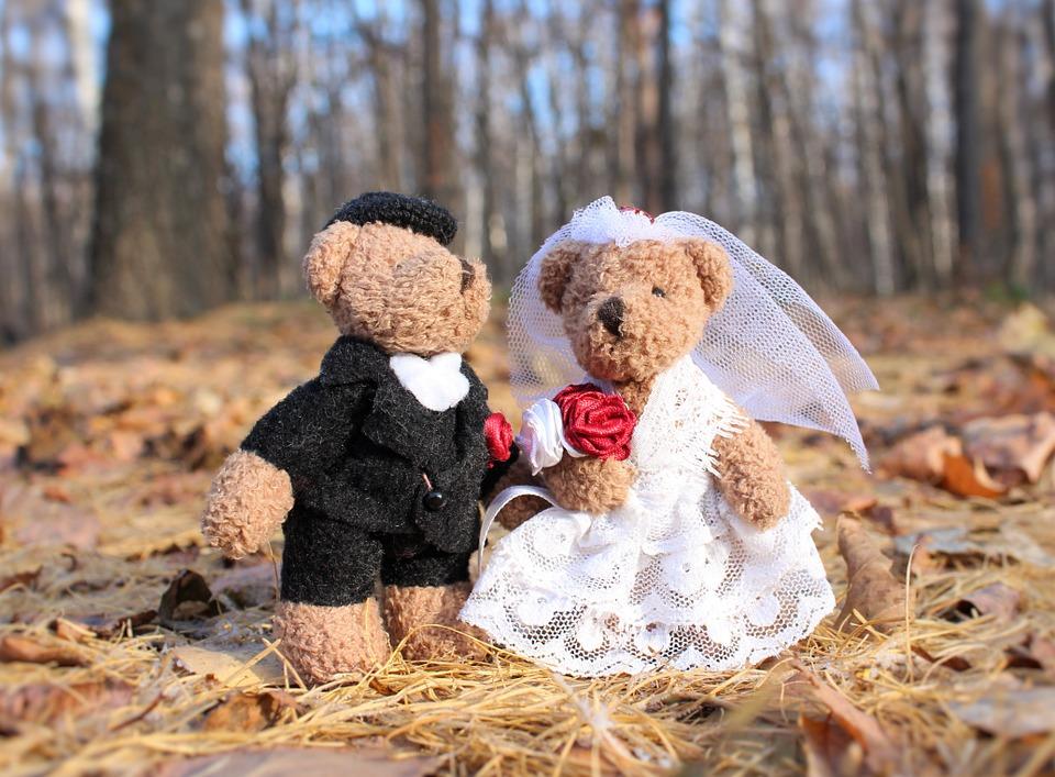 wedding-1034430_960_720